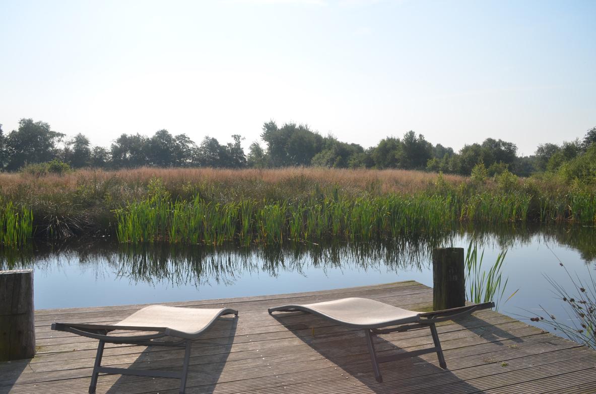 Teich der Pianova Ferienwohnungen