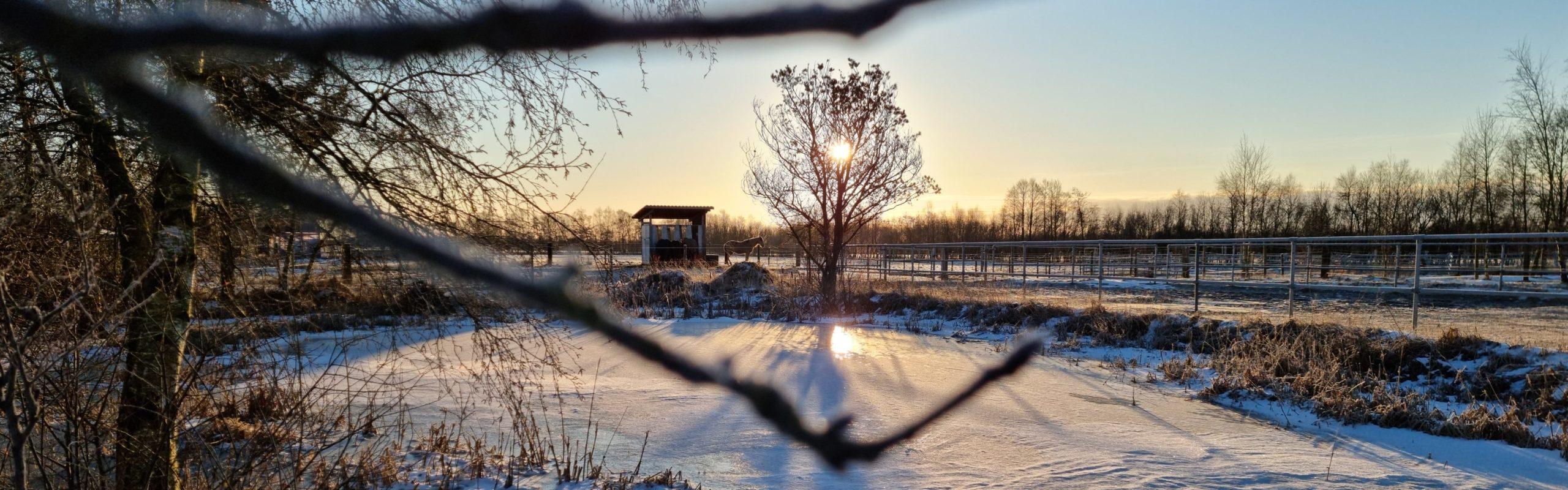 Winter 2021 bei den Pianova Ferienwohnungen