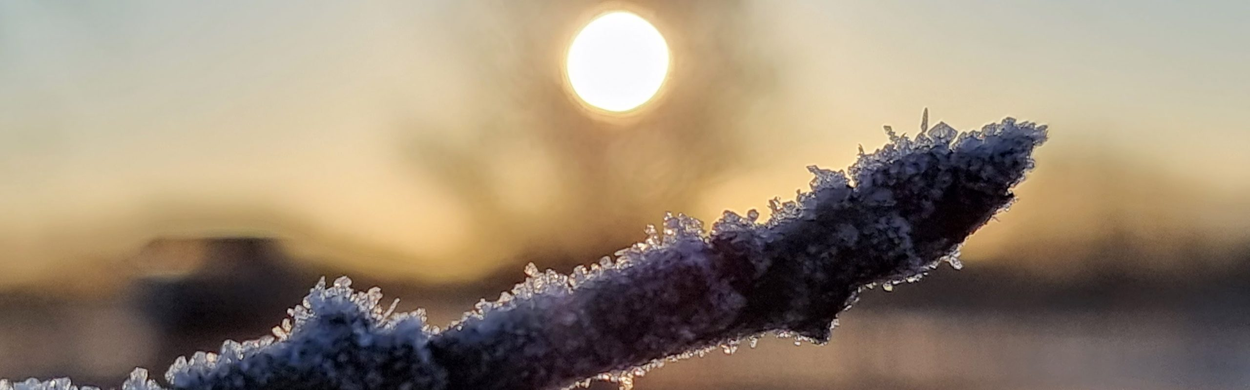 Eiskristalle bei Sonnenaufgang